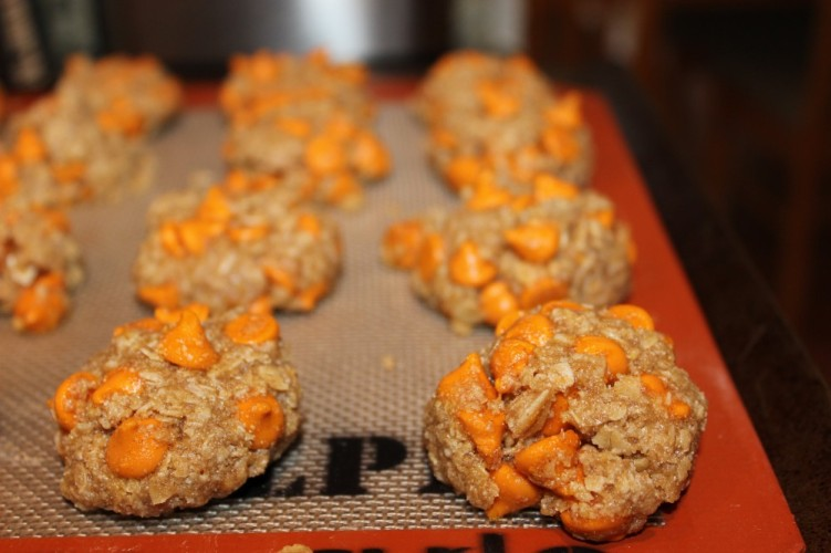... pumpkin spice! Pumpkin Spice Oatmeal Cookies will be your new favorite