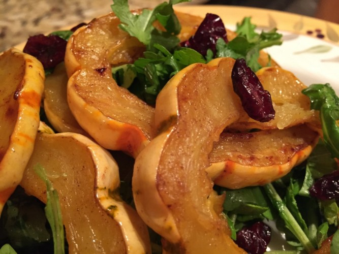 roasted delicata squash with arugula and dried cranberries