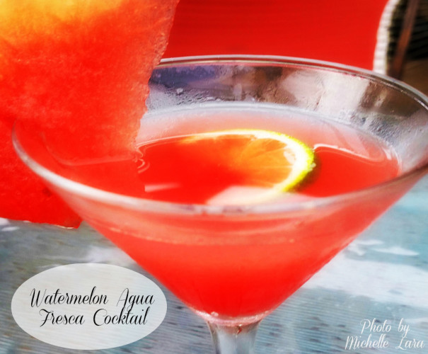 watermelon-aqua-fresca-cocktail_pin